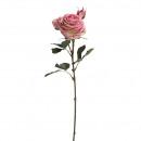 Rose Dior gevuld, lengte 64cm, 2 Blossoms, 1 Kno